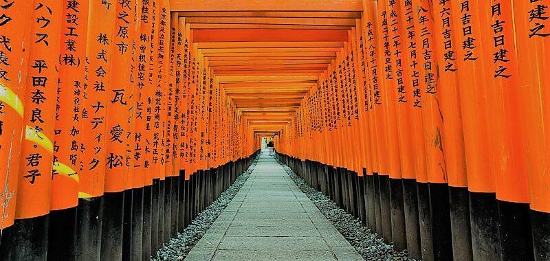 Cosa vedere a Nara in Giappone, la città dei Cervi